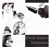 <i>Three states between places</i>, Olivier Dominici
