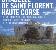 LA COLLECTION DE LA FONDATION CARTIER POUR L'ART CONTEMPORAIN ET LA COLLECTION DU FRAC CORSE, ANGE LECCIA.